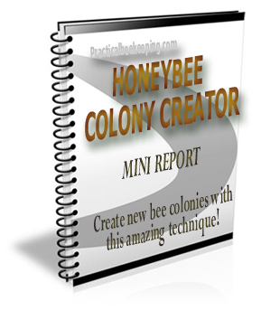 Honey Bee Colony Creator Mini Report